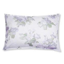Bakside, violetta Iris